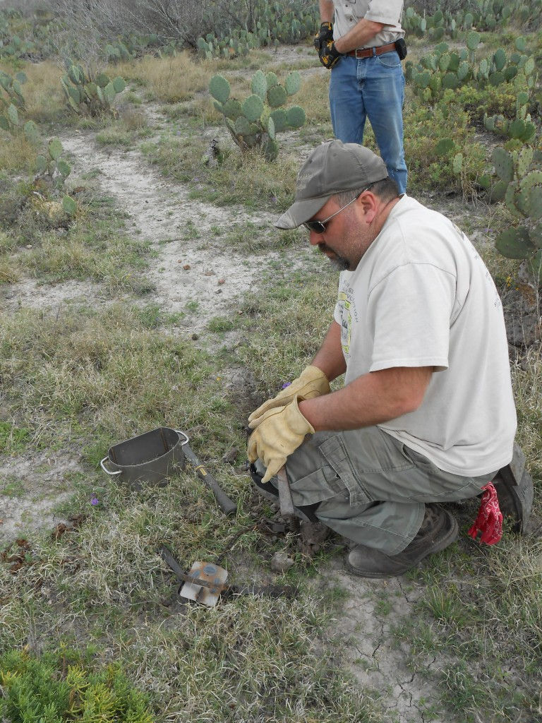setting coyote trap texas trapping school